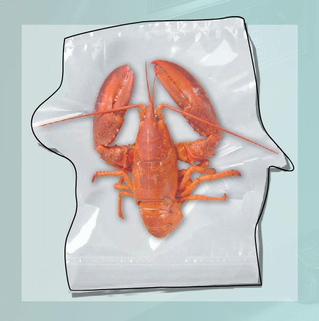 вакуумный пакет для упаковки морепродуктов